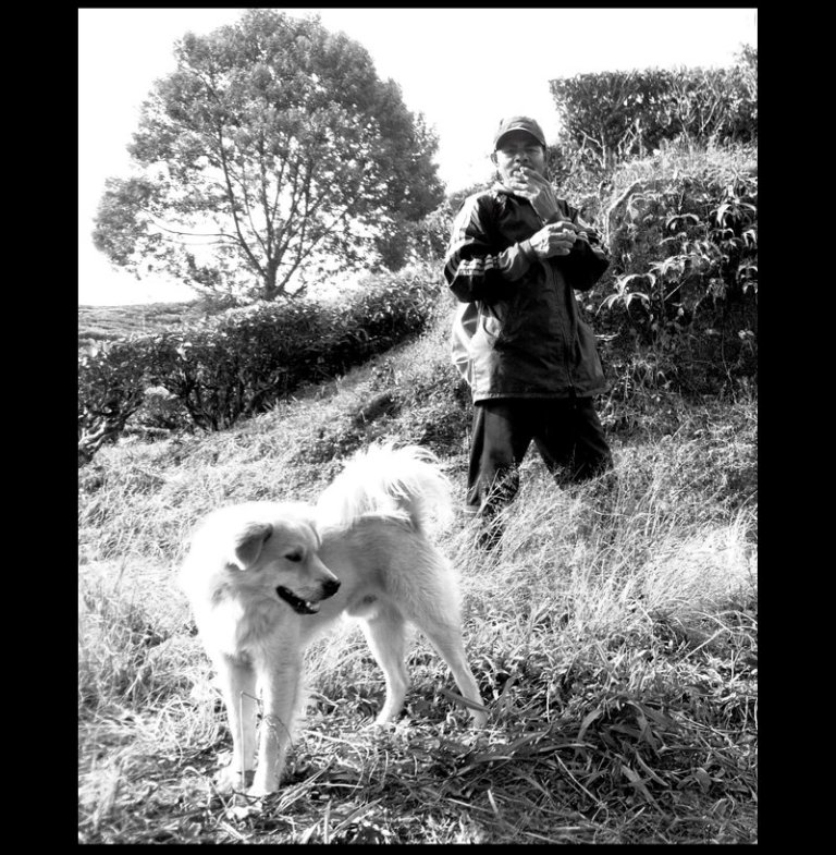 petani dan anjingnya - anwar holid